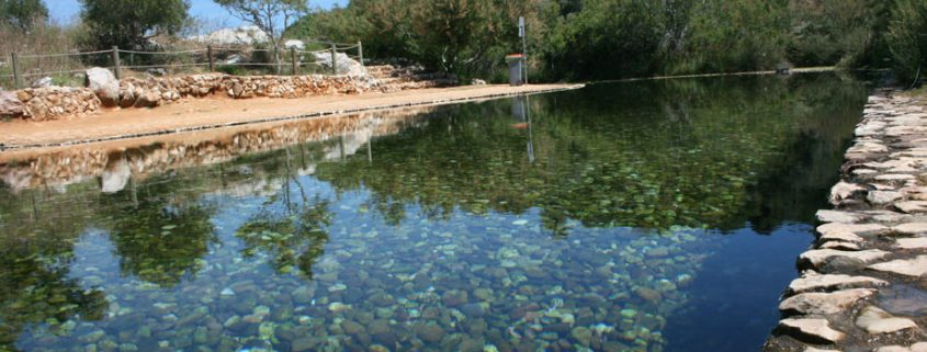 Next Big Thing Just imagine taking a cooling dip in this crystal clear water